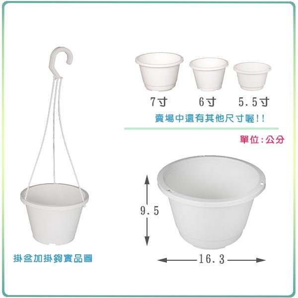 【綠藝家】白色吊盆(含吊鉤)6寸
