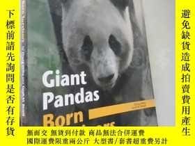 二手書博民逛書店Giant罕見Pandas Born Survivors (20開 英文原版)Y16472 Zhang Zhi