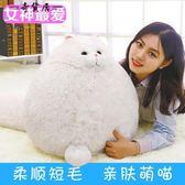 白色貓咪公仔大抱枕靠枕  新款可愛長尾貓咪毛絨玩具玩偶 送女友