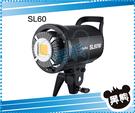 黑熊館 Godox 神牛 SL-60Y 黃燈 LED 攝影燈 採訪燈 太陽燈 持續燈 外拍燈 SL60Y 持續燈