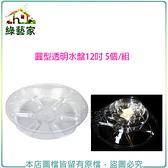 【綠藝家】圓形透明水盤12吋5個/組