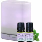 二段式高頻負離子水氧機-紫色+加贈精油(巴西橙+檸檬)