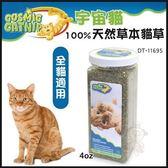 *KING WANG*【DT-11695】美國宇宙貓《100%天然草本貓草》4oz