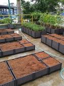特賣花盆菜園兄弟家庭陽臺種菜箱長方形種植槽樓頂特大花盆有機蔬菜種植箱 LX