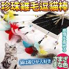 【培菓平價寵物網 】DYY》爆款羽毛珍珠雞毛逗貓棒53cm(顏色隨機)
