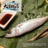 宜蘭新鮮現撈 鯖魚 / 青花魚 ( 小尾 400g±10%_尾 )【大溪現流】