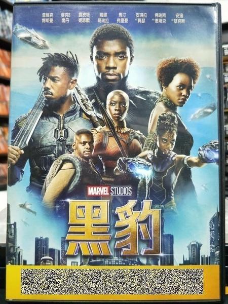 挖寶二手片-P52-017-正版DVD-電影【黑豹】-激樂人心-查德維克博斯曼(直購價)
