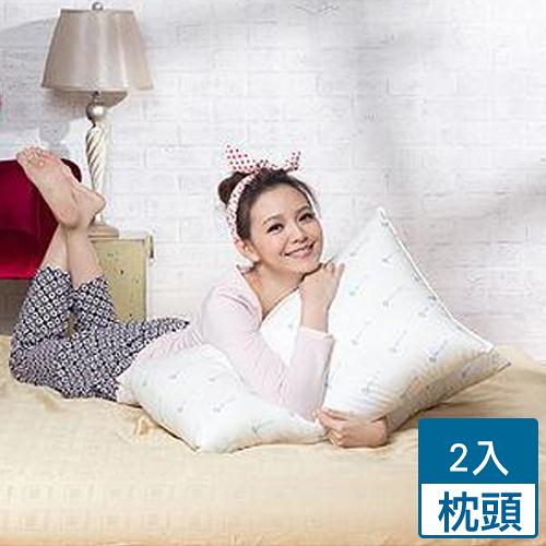 2件超值組金洛貝達防蹣抗菌枕頭(45*75cm)【愛買】