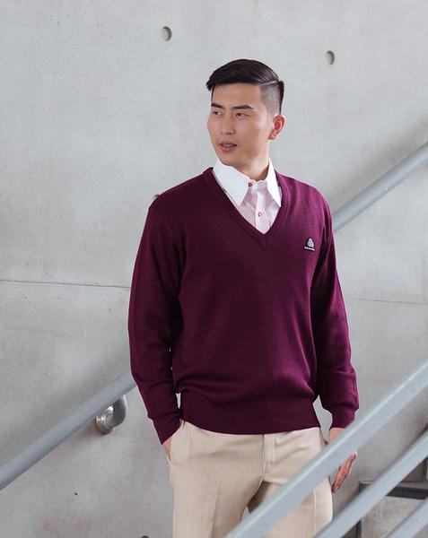 男士 針織毛衣 防縮 V領毛衣 純羊毛衣 三燕牌羊毛上衣 美麗諾羊毛  100%純羊毛 7972-2  V領 棗紅色