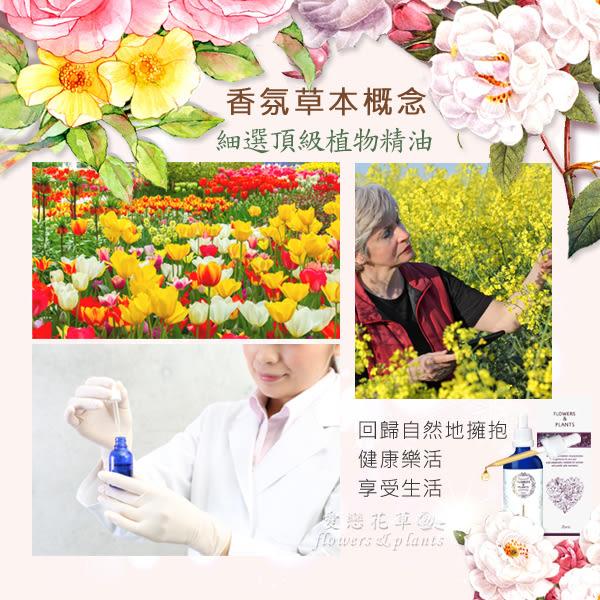 【愛戀花草】百合花+向日葵+茉莉花+野薑花 水氧薰香精油(30ML / 四瓶組)