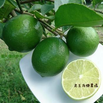 老王有機檸檬5台斤含運組