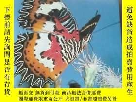 二手書博民逛書店英文原版---Malaysian罕見Butterflies an introductionY319416 英文