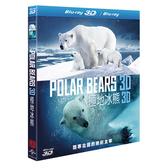 極地冰熊 3D Polar Bear 3D