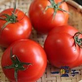 一籃子.預購  新社牛番茄5斤﹍愛食網