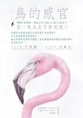 (二手書)鳥的感官:當一隻鳥是什麼感覺?