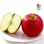 富士蘋果270gx3粒/組
