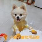 寵物狗狗鞋子不掉春夏季網眼透氣四只裝小型犬【小獅子】