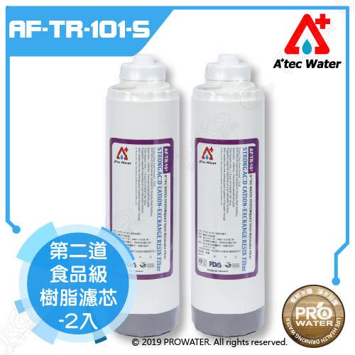 【水達人】ATEC 第二道樹脂濾芯/食品級樹脂濾心 2入(AF-TR-101-S)
