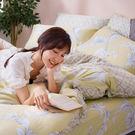 床包 / 雙人加大【覓見微熙】含兩件枕套  60支天絲  戀家小舖台灣製AAU301