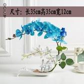手感仿真蝴蝶蘭套裝假花盆栽裝飾花中式餐桌家居客廳玫瑰擺件花藝wl10658[黑色妹妹]
