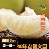 普明園.買一送一AA級台南麻豆40年老欉文旦(5台斤/箱)﹍愛食網
