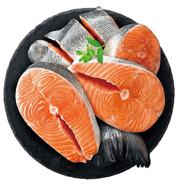 耐吉斯源野高蛋白系列無穀全齡犬鮭魚配方3磅
