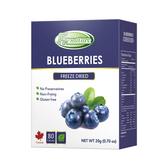 Frenature富紐翠-藍莓翠鮮果凍乾 20g (冷凍真空乾燥水果乾)