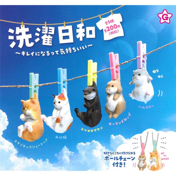 全套5款【日本正版】曬動物的好天氣 扭蛋 轉蛋 曬太陽動物 曬動物 YELL - 827572