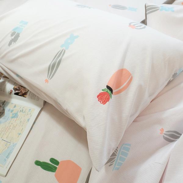 夏日粉仙人掌 S1單人床包2件組 四季磨毛布 北歐風 台灣製造 棉床本舖