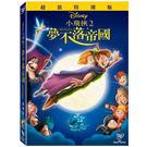 迪士尼動畫系列限期特賣 小飛俠 2:夢不落帝國 DVD (音樂影片購)