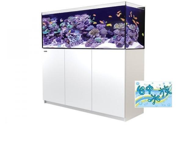 {台中水族}以色列原裝Red Sea -REEFER 450珊瑚礁岩水族套缸(白)  特價 150*55*50cm 超白玻璃15mm