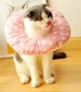 伊麗莎白圈貓狗寵物脖圈