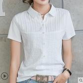 現貨-運動衫短袖 t恤女短袖夏季新款洋氣體?衫純棉有領帶領翻領小衫半5/21