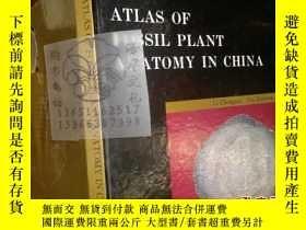 二手書博民逛書店ATLAS罕見OF FOSSIL PLANT AN ATOMY