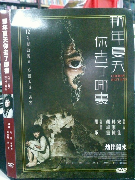 挖寶二手片-P64-008-正版DVD-華語【那年夏天你去了哪裡】-宋佳 林家棟 顏卓靈 胡歌(直購價)