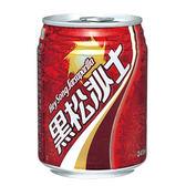 黑松沙士易開罐245ml*24入【愛買】