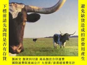 二手書博民逛書店Texas罕見(Lonely Planet Regional G