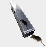 自動滅鼠捕鼠器神室內