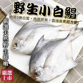 【海肉管家】嚴選鮮嫩野生小白鯧 x1包(270g±10%/包 每包3尾)
