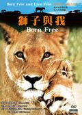 獅子與我 DVD