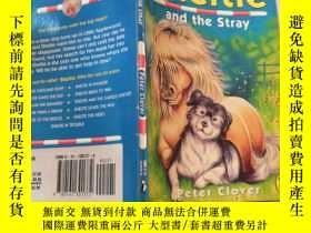 二手書博民逛書店sheltie罕見and the stray 謝爾蒂和流浪漢Y200392 不祥 不祥