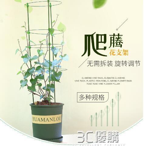 護葉架植物花卉固定支架爬架花架月季綠蘿花盆支架室內綠植爬藤架 3C優購