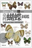 臺灣蝴蝶圖鑑(中)灰蝶