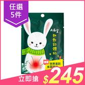 【任5件$245】大安堂 熱敷舒體貼(1片入)【小三美日】