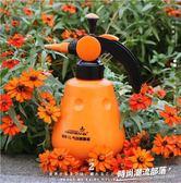 澆花噴壺小噴水壺神器氣壓式壓力小型園藝家用澆水壺灑水壺噴霧瓶