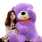 新品玩偶毛絨玩具熊公仔熊貓抱抱熊抱枕女生日禮物布娃娃特大號圣誕節超大  LX