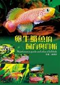 卵生鱂魚的飼育與賞析