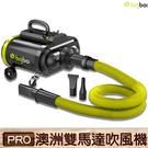 【澳洲品牌】bigboi PRO 雙馬達乾燥吹風機 吹水機 汽機車用 汽車美容 居家清潔 現貨 原廠