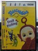 挖寶二手片-P03-126-正版DVD-動畫【天線寶寶:一起摘水果】-BBC*國英語發音(直購價)