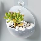 壁掛式花瓶 RN2660